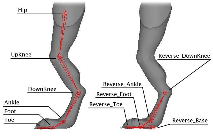 Inversion of foot